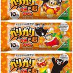 くまモン誕生10周年ロゴ入りの限定パッケージ! 今年もガリガリ君は熊本地震復興支援を応援します! 九州のみかん果汁を使用した、くまモンとのコラボ商品「ガリガリ君九州みかん」 #くまモン