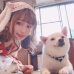 話題の動物カフェに行ってみた Vol.6「原宿乃豆柴カフェ」