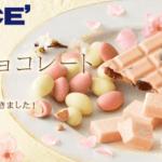 """【ロイズ】""""桜""""のチョコレートでお花見を。桜香るスイーツを2月16日より販売中!"""