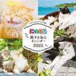 「まっぷる」が作ったねこ旅本「にゃっぷる」から新商品!『にゃっぷる 旅するねこカレンダー2022 卓上版』発売